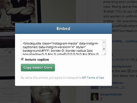 RadEditor and Instagram Embed Not Working in UI for ASP NET AJAX