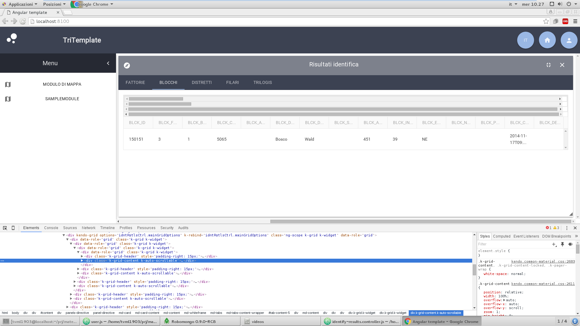 AngularJs Grid Dynamic compute columns and datasource in