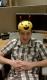 Sean avatar
