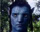 Stoil avatar