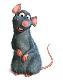 Daniel avatar