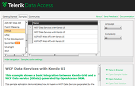 Telerik Data Access Samples Kit