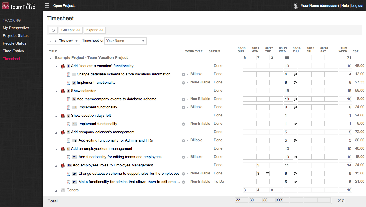 TeamPulse Time Tracking - Timesheet View
