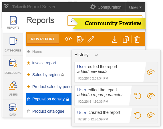 Report Server Community Preview