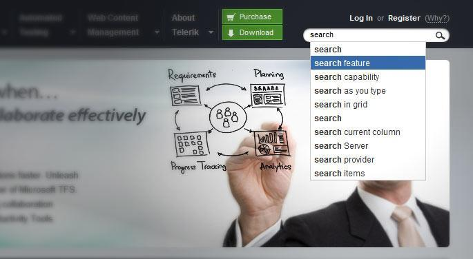 The site search autocomplete
