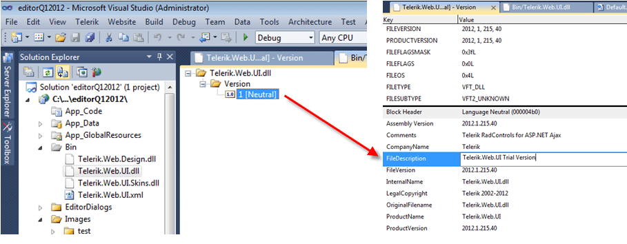 Visual Studio assembly properties