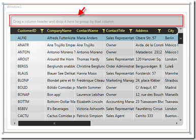Grouping data in the RadGridView for WPF
