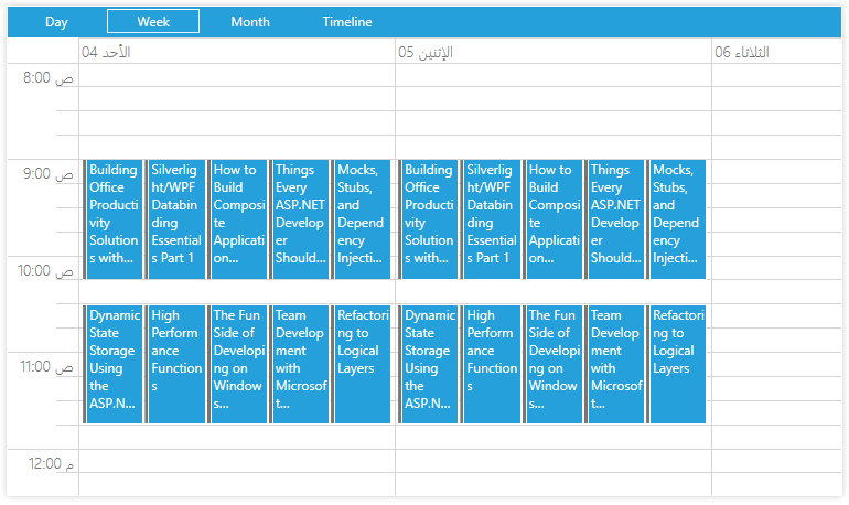 Telerik UI for WPF Scheduler Shamsi Support Image