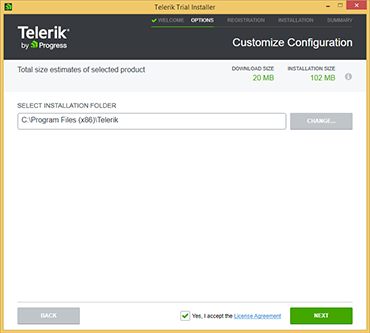 Telerik download file