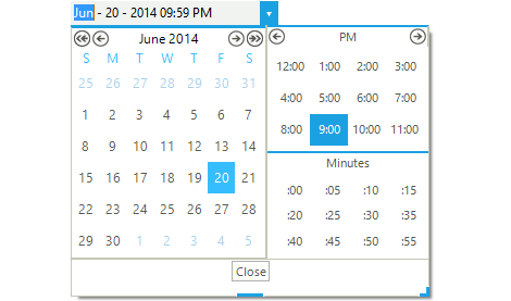 Date Time Picker WinForms