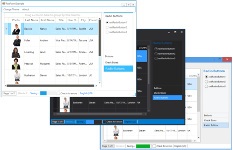 UI for WinForms Form Appearance