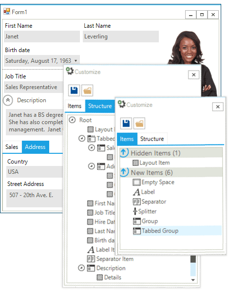 UI for WinForms LayoutControl Customization